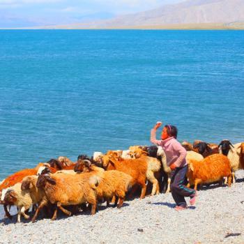 The shepherd boy by the Sayram Lake